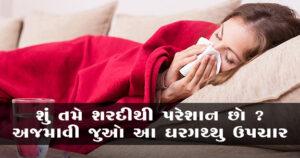 શું તમે શરદીથી પરેશાન છો ? અજમાવો આ ઘરગથ્થુ ઉપચાર (Home remedies for Cold and Cough)